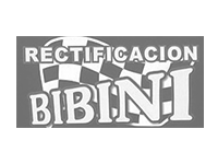 Rectificacion Bibini